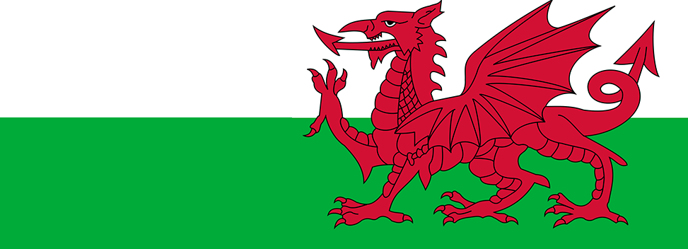 Image result for wales banner