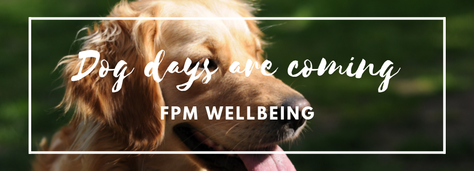 Dog days are coming_ FPM Wellbeing.png